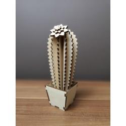 Kaktus drewniany